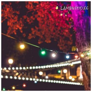 Lambikett 10m värviliste lampidega (rent)