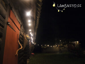 Lambikett 25m/25pesa + LED lambid (rent)